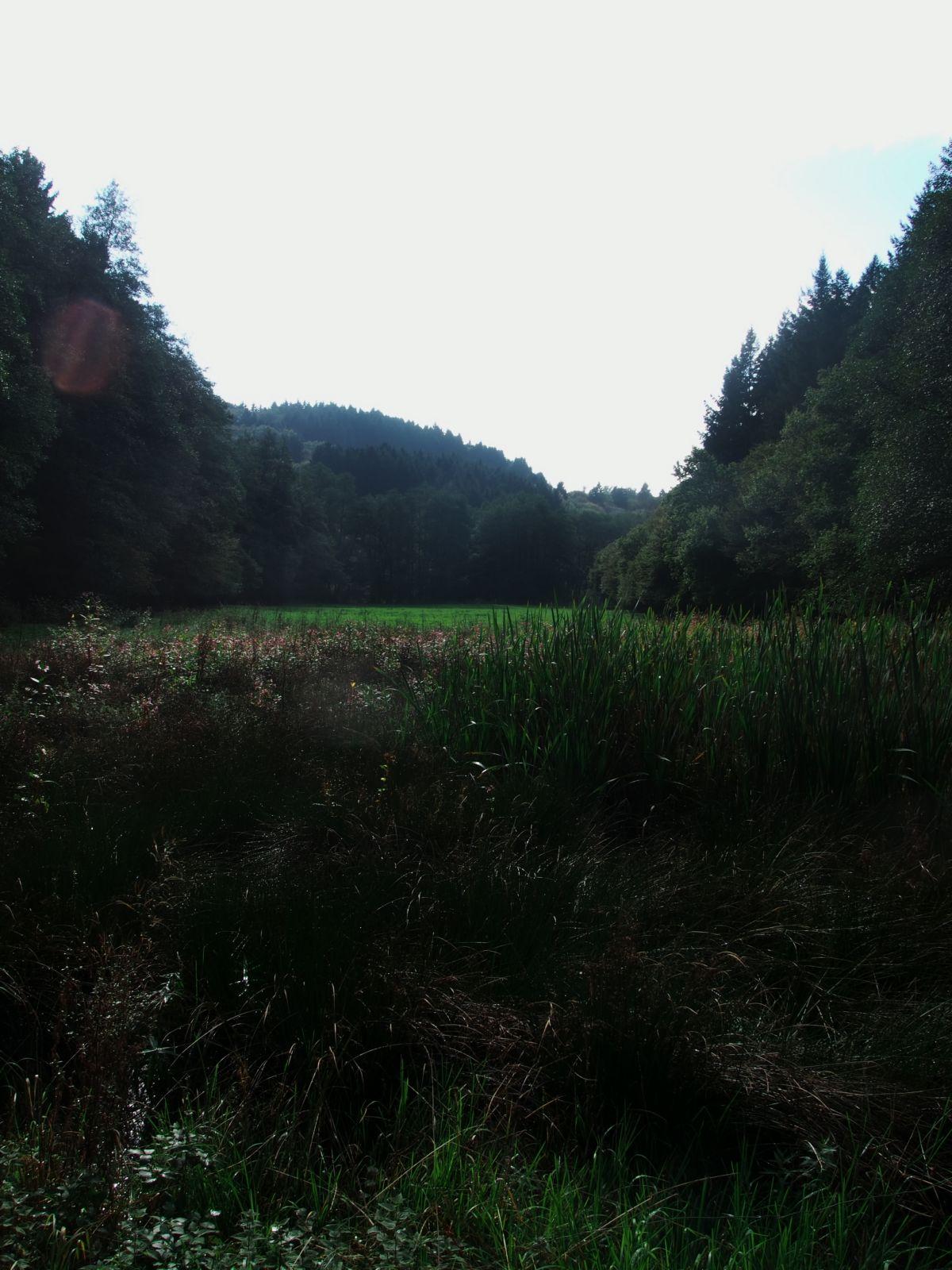 Westerwald 07