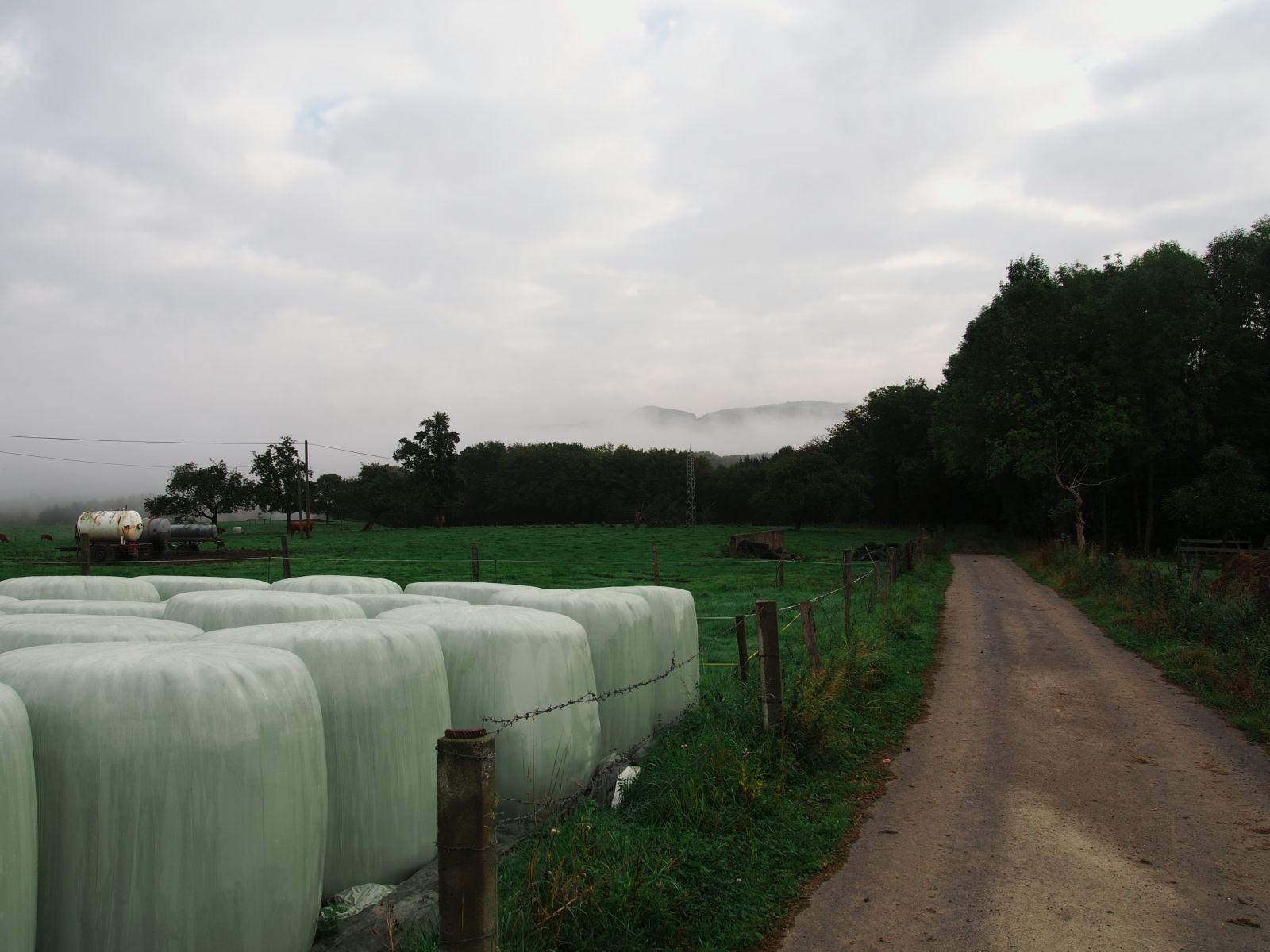 Westerwald 16