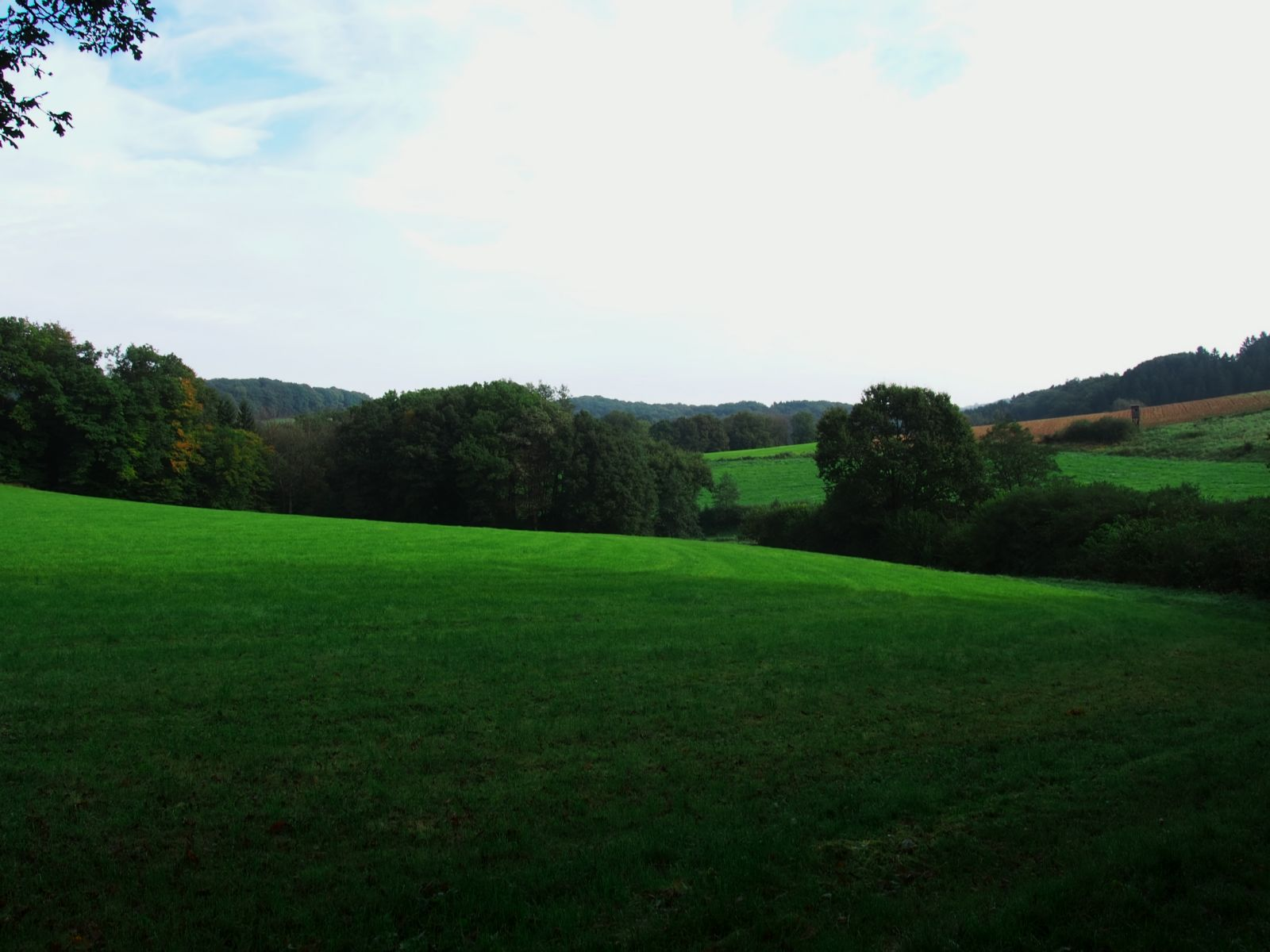 Westerwald 34