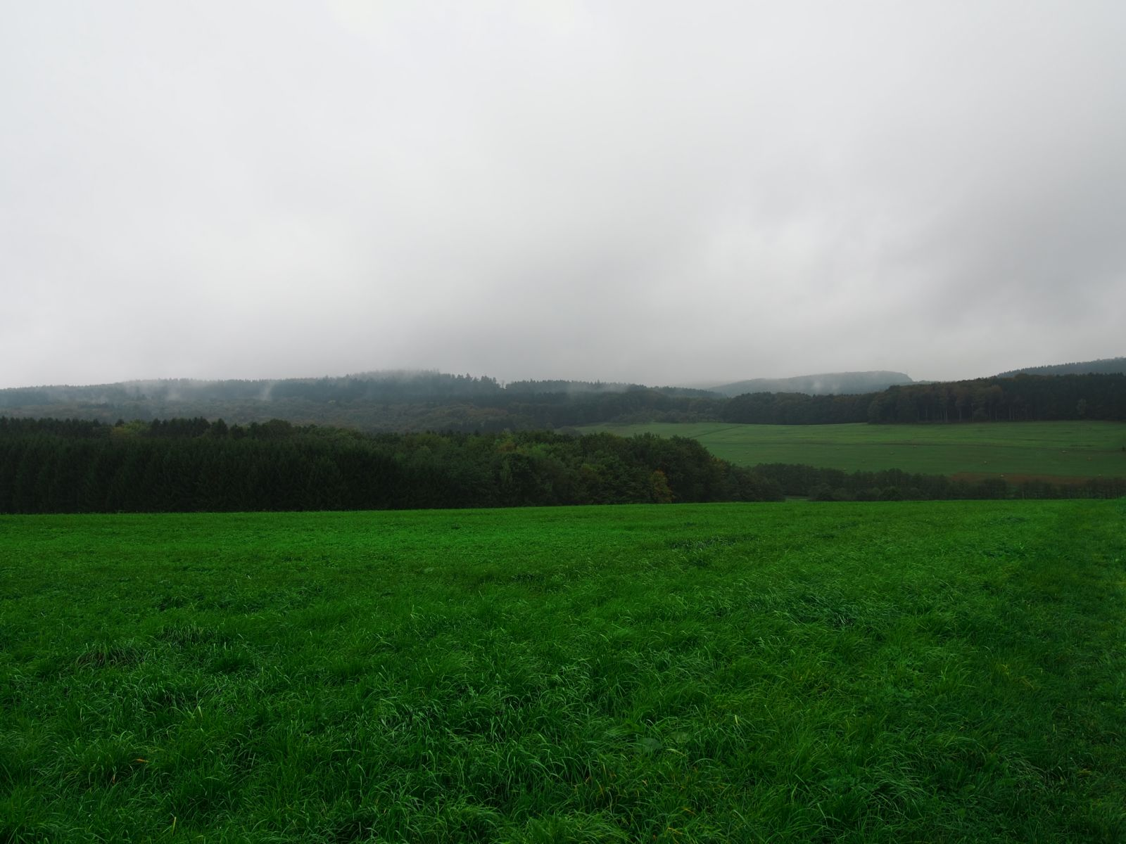 Westerwald 41