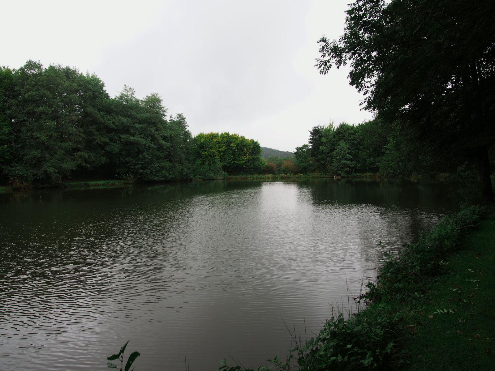 Westerwald 44