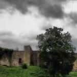 Ausflüge im Westerwald: Burgentour