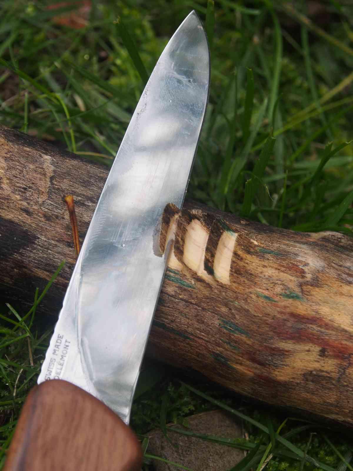 Victorinox Ranger Wood 55 - Die Klinge bei der Arbeit