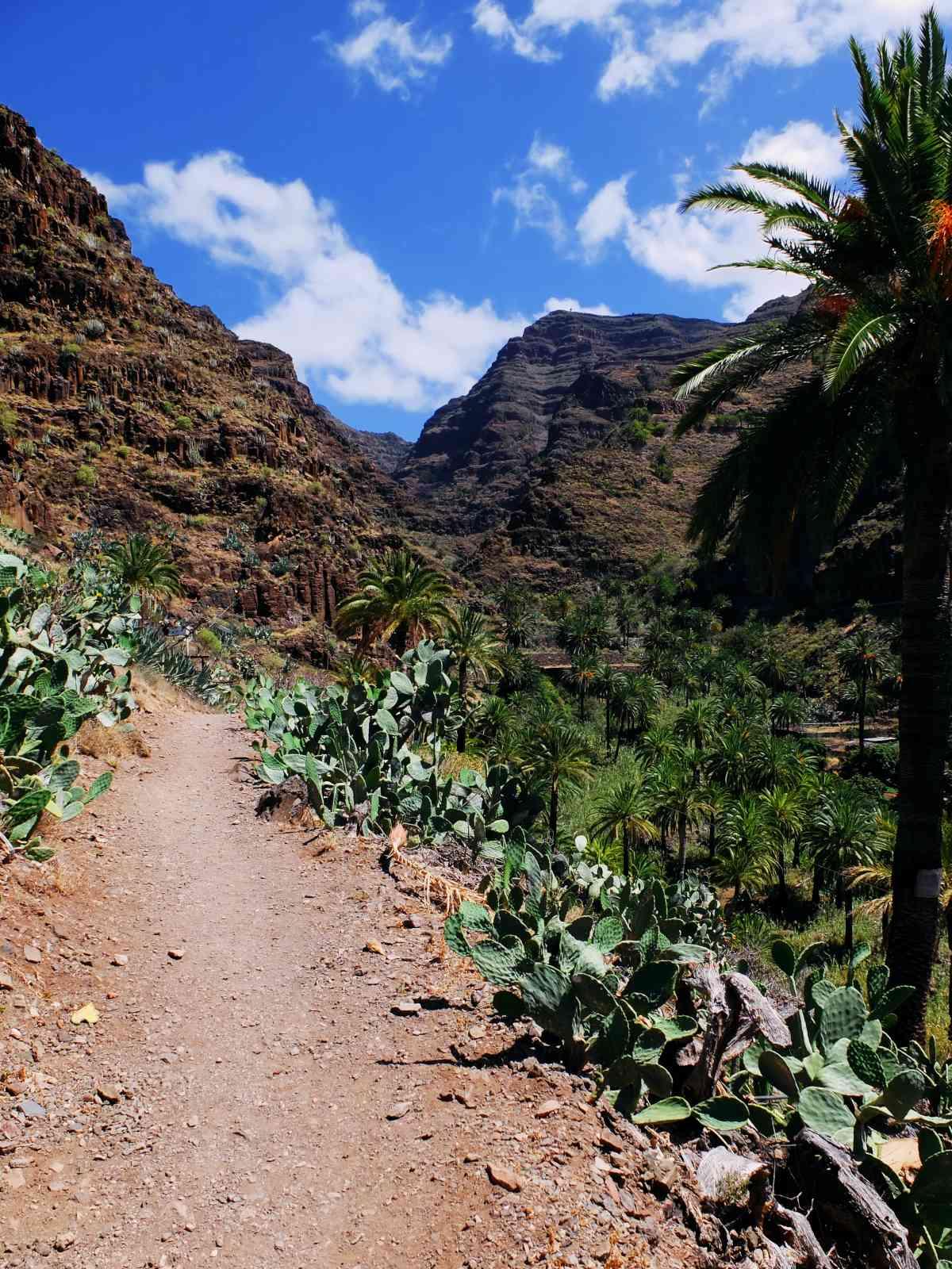 Der Wasserfall von El Guro - Der Ziegenpfad