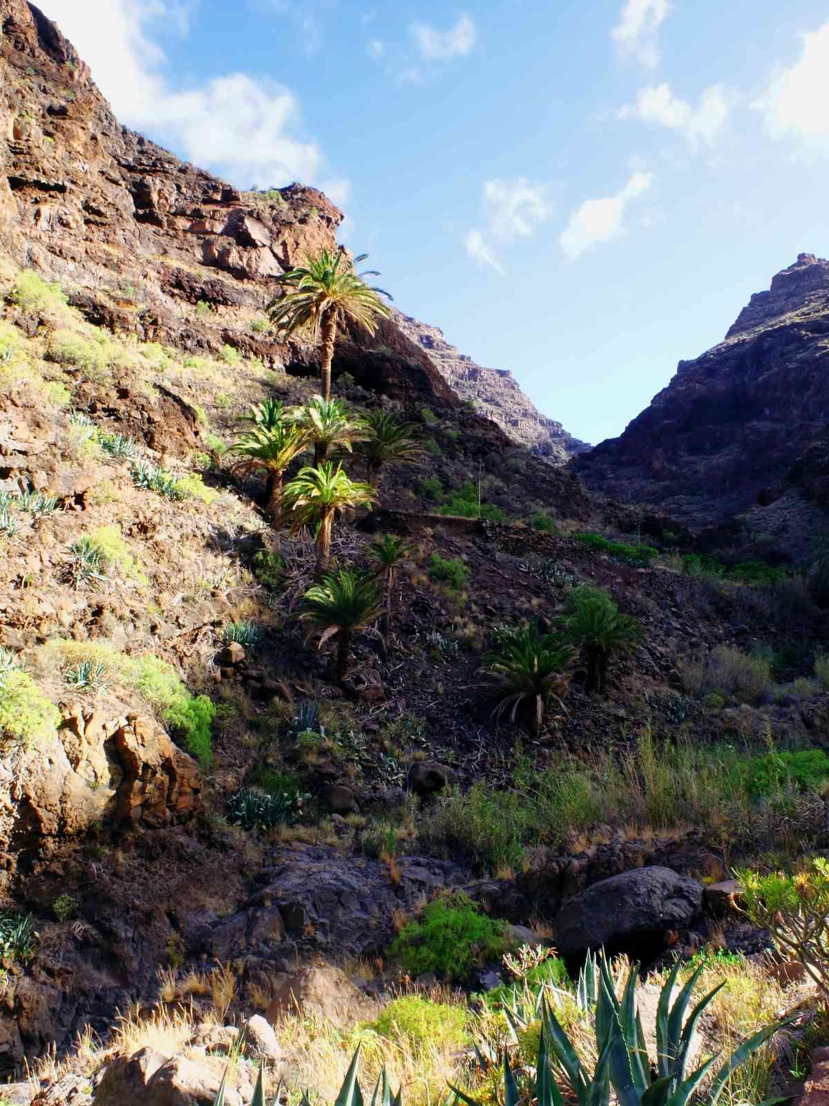 Durch die wilde Argaga-Schlicht - Einsame Felsen