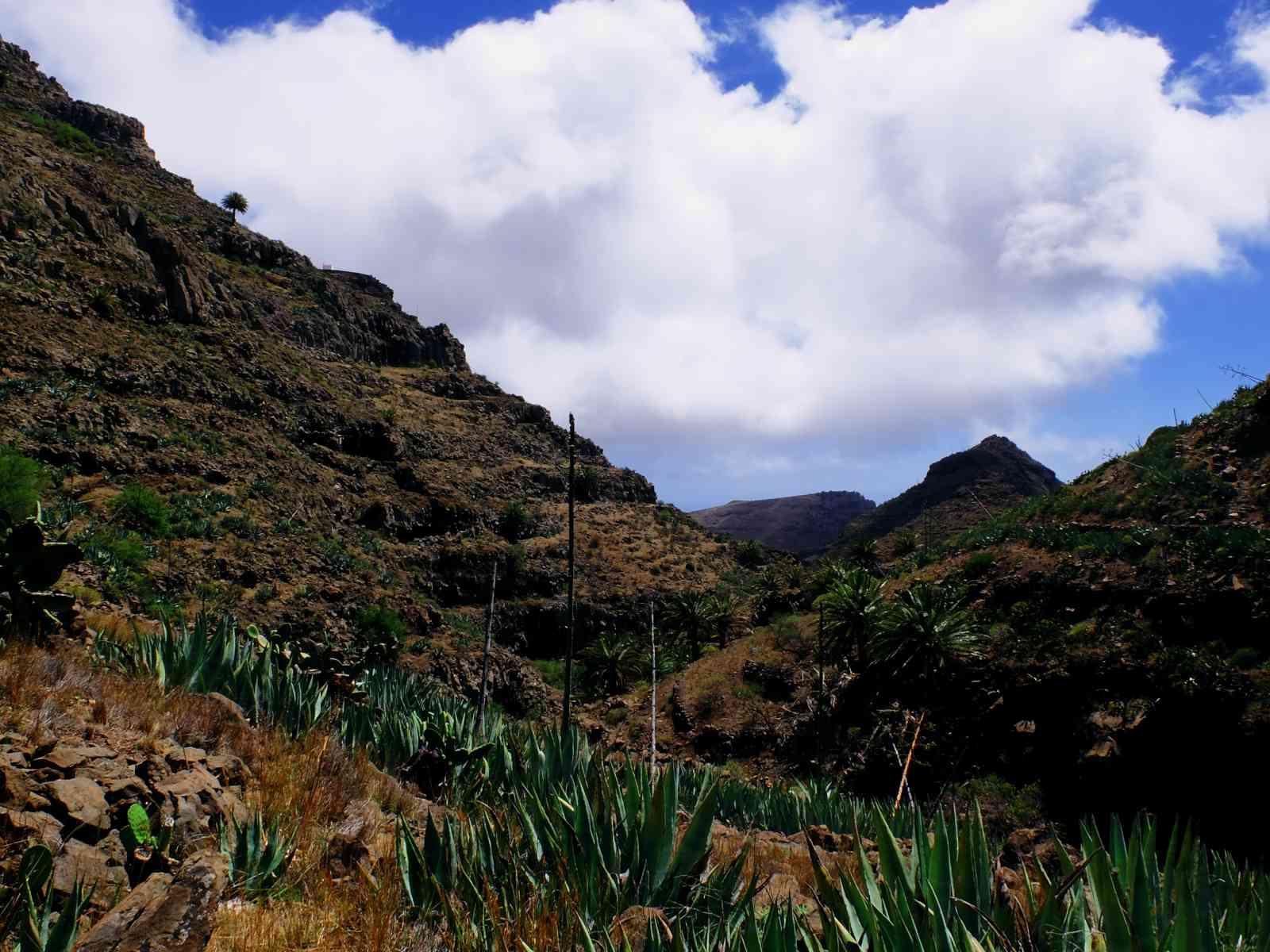 Durch die wilde Argaga-Schlucht - Felspanorama