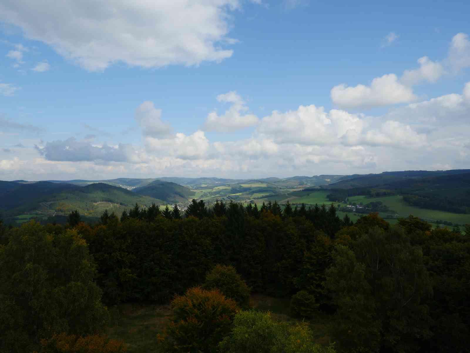 Auf den Wilzenberg - Ausblick vom Aussichtsturm