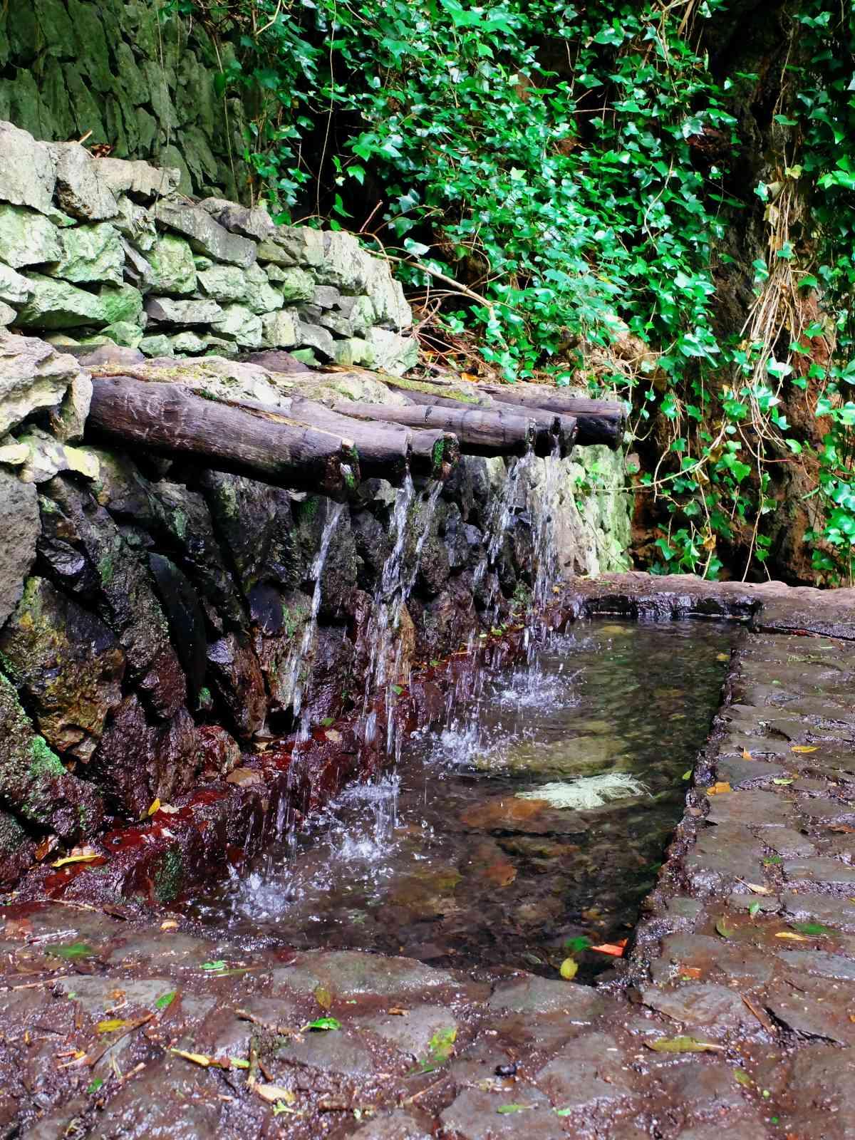 Inselrundfahrt La Gomera - Die heiligen Quellen von Epina