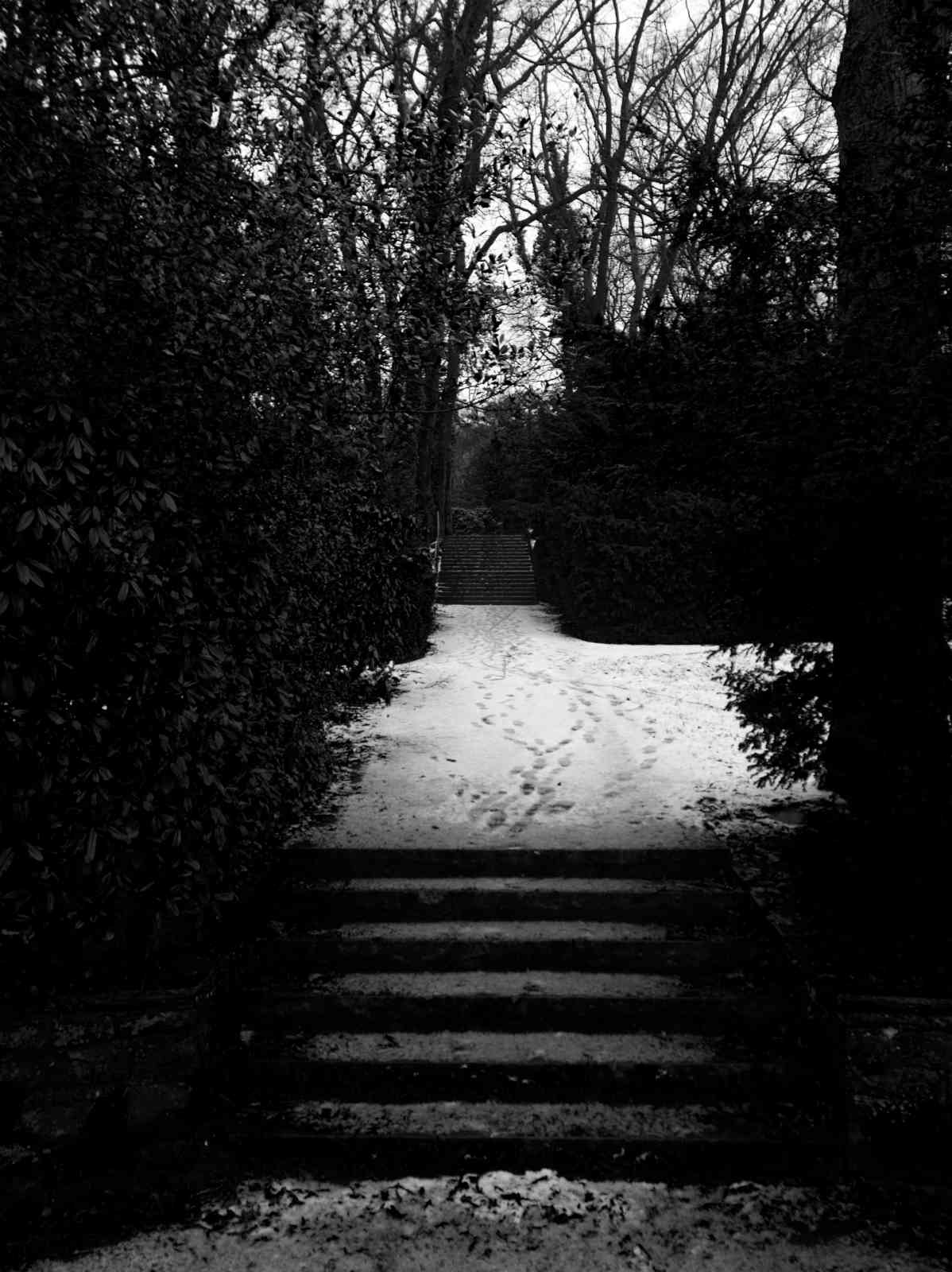 Ehrenfriedhof Königshöhe - Spuren im Schnee