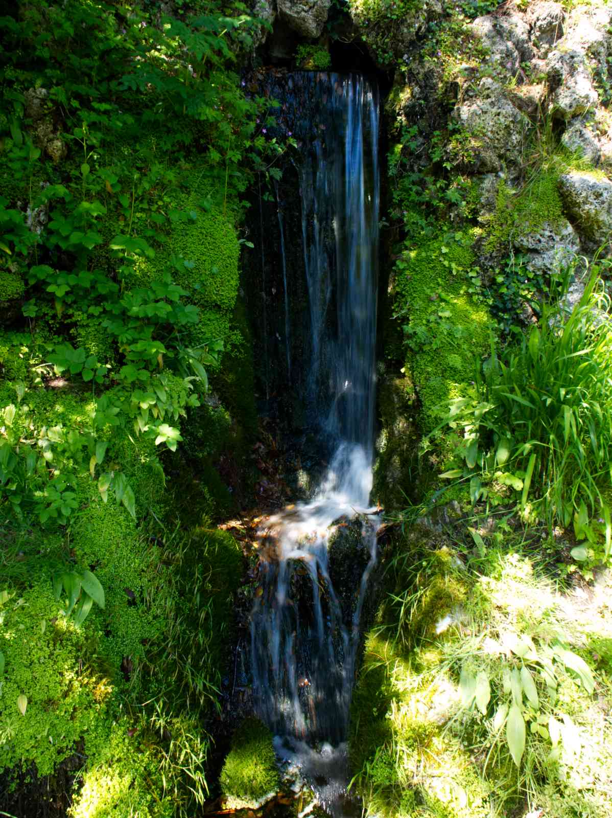 Powerscourt Gardens - Die Grotte