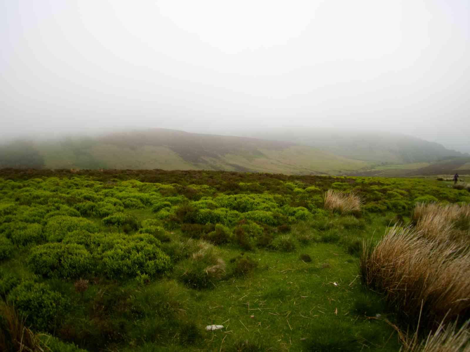 Auf dem Wicklow Way - Sanfte Hügel