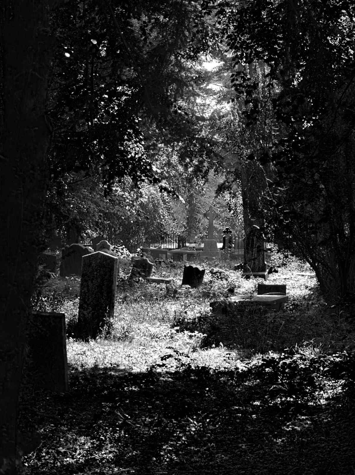 Friedhof Powerscourt Gardens 06