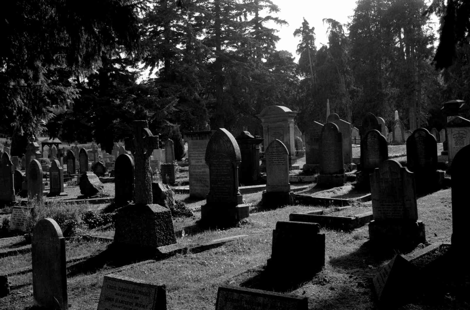 Friedhof Enniskerry 02, Rollei35 Ilford HP5 400