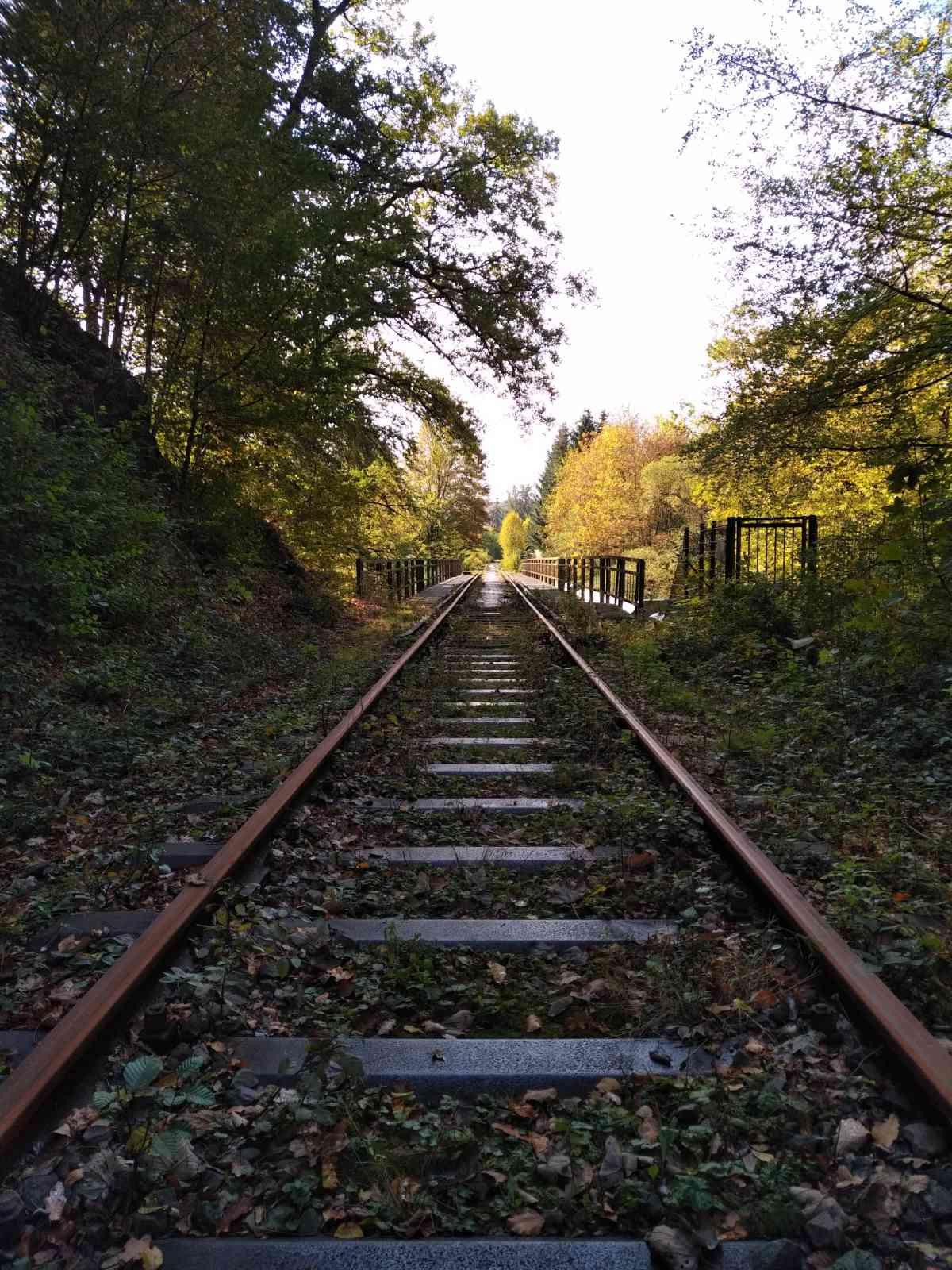 Biber-Suche an der Wuppertalsperre - Die erste Eisenbahnbrücke