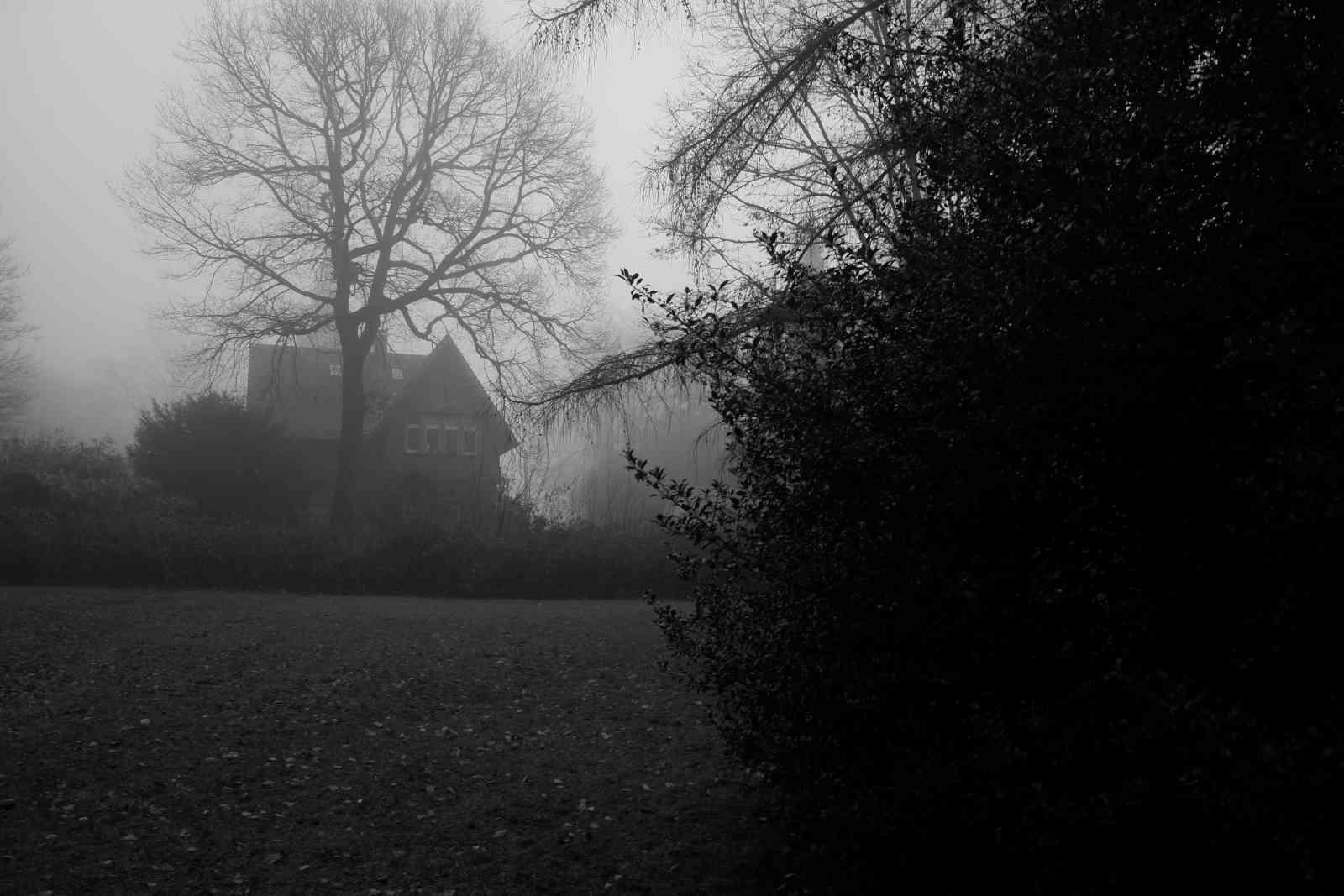 Im Nebel 01