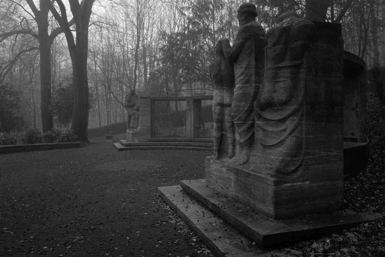 Im Nebel 03
