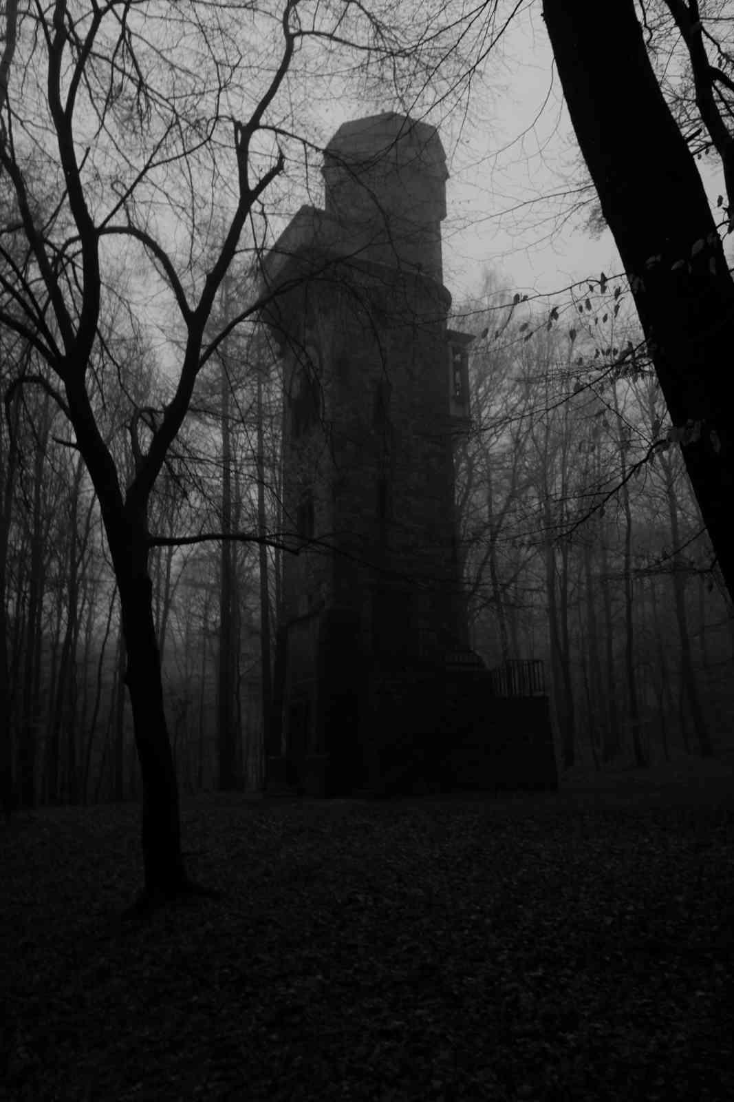 Im Nebel 04