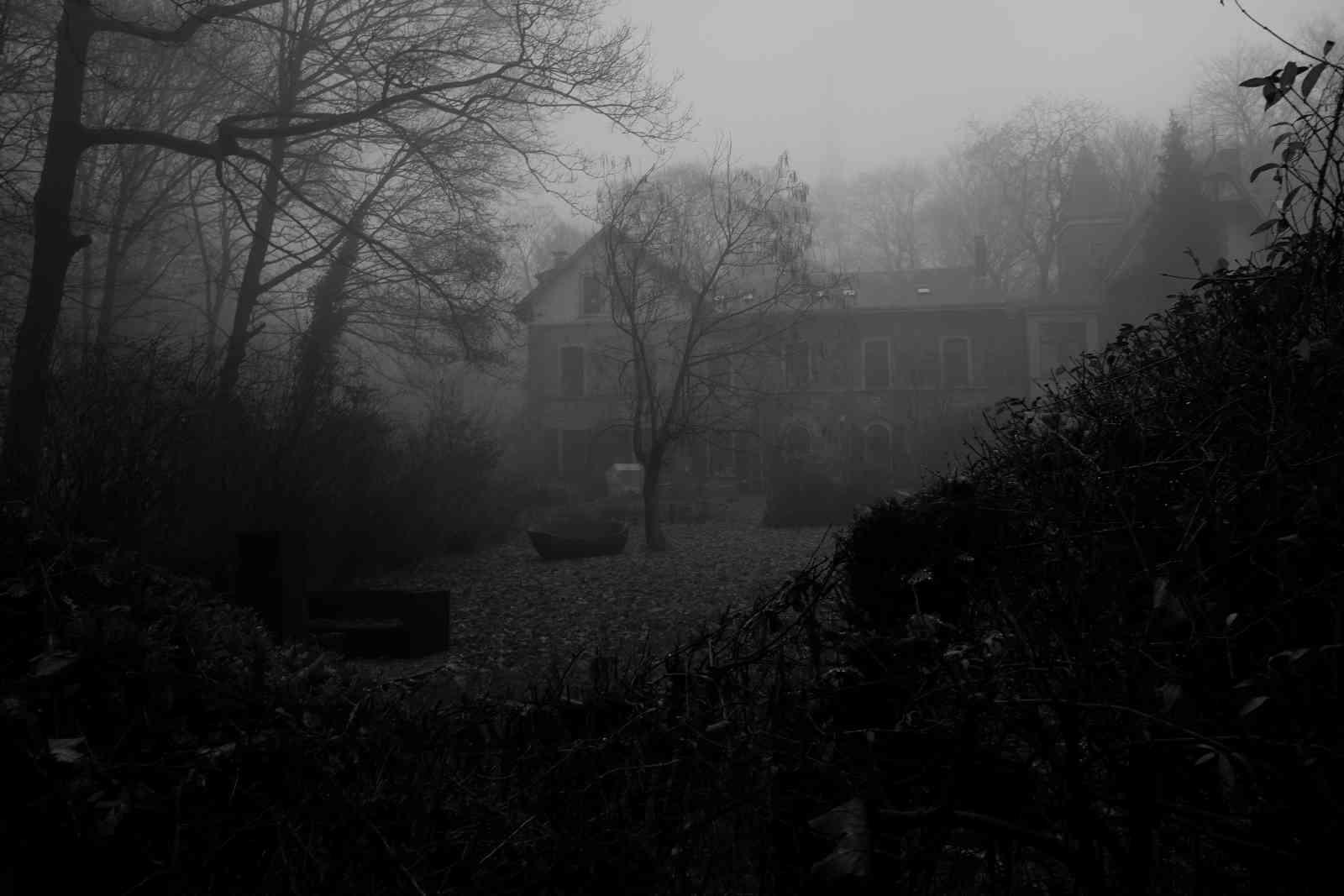 Im Nebel 07