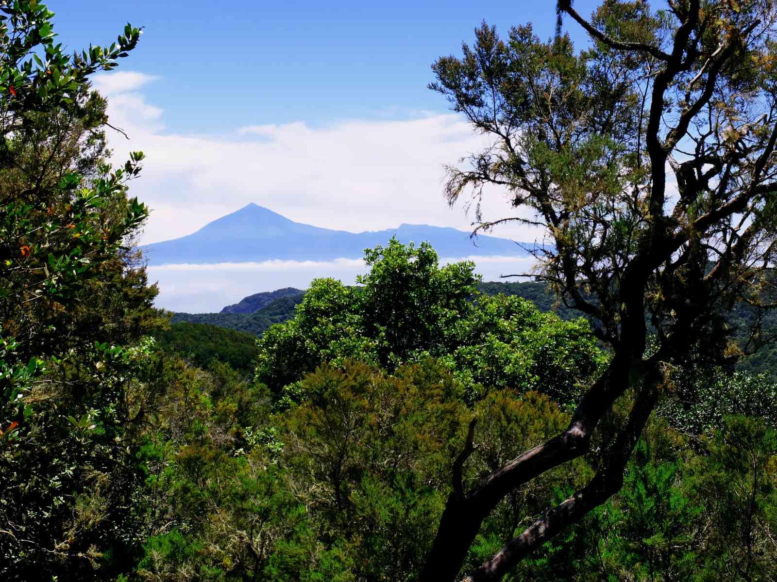 Die höchsten Berge von La Gomera - Teneriffa