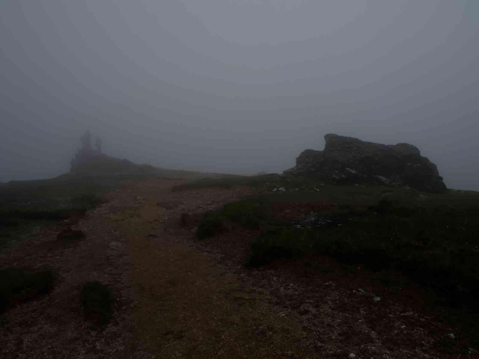 Auf dem Wicklow Way - Djouce Mountain