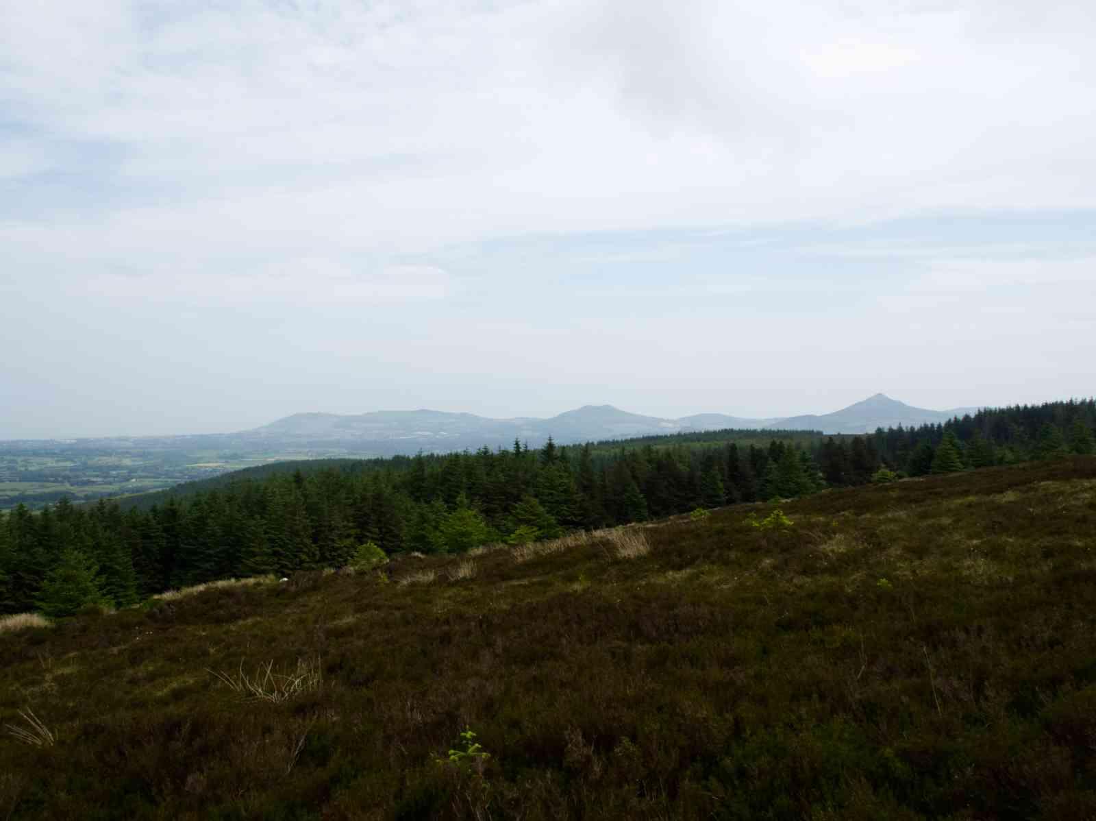 Prince William's Seat - Blick vom Gipfel