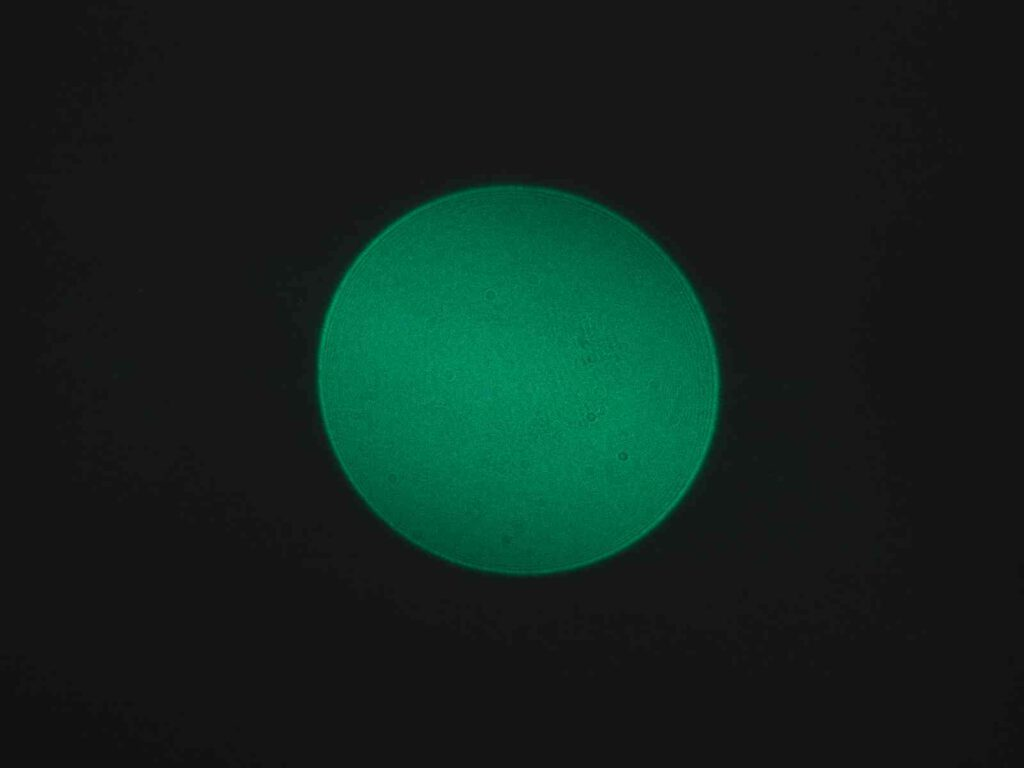 Grüner Spot